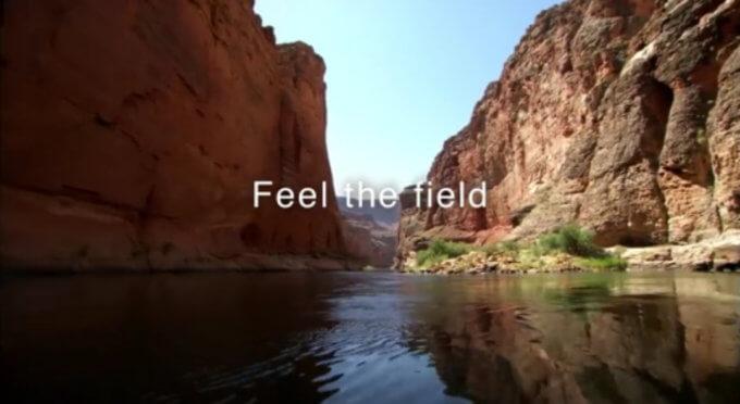 feel-the-field