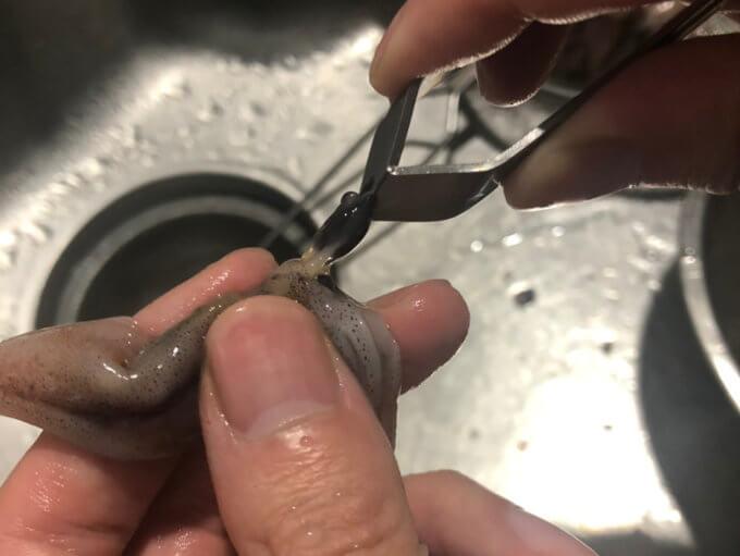 生ホタルイカの目玉とり2