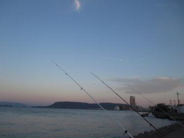 堤防で「投げ竿」が便利!ダイワ エクストラサーフが様々な釣りで活躍!