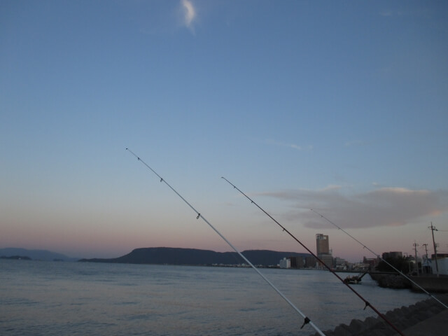 堤防に並ぶ釣竿